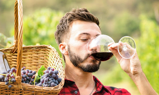 Amazing Wine Tasting Tips for Beginners